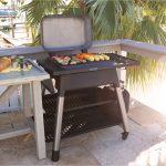 Force open grilling steaks deck waterside