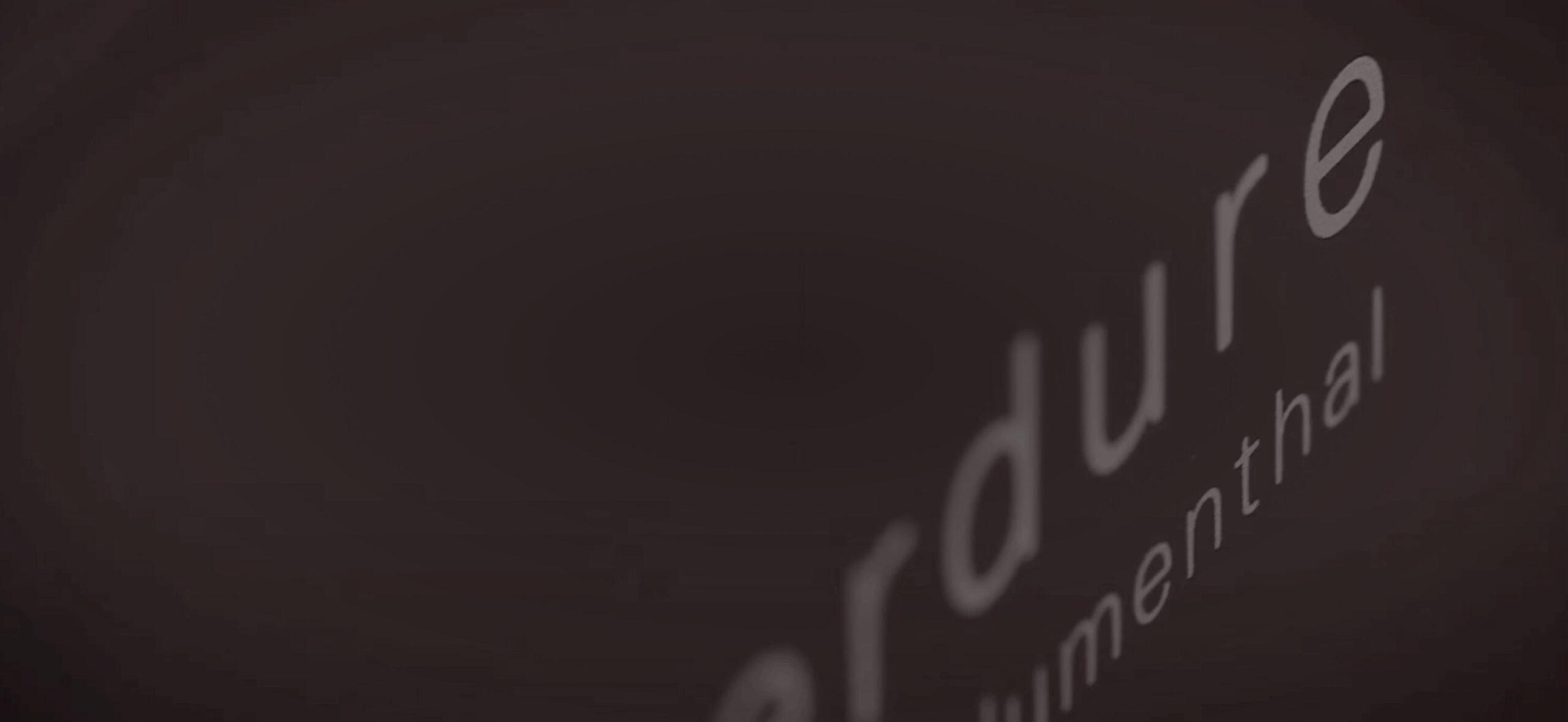 Everdure logo on hub